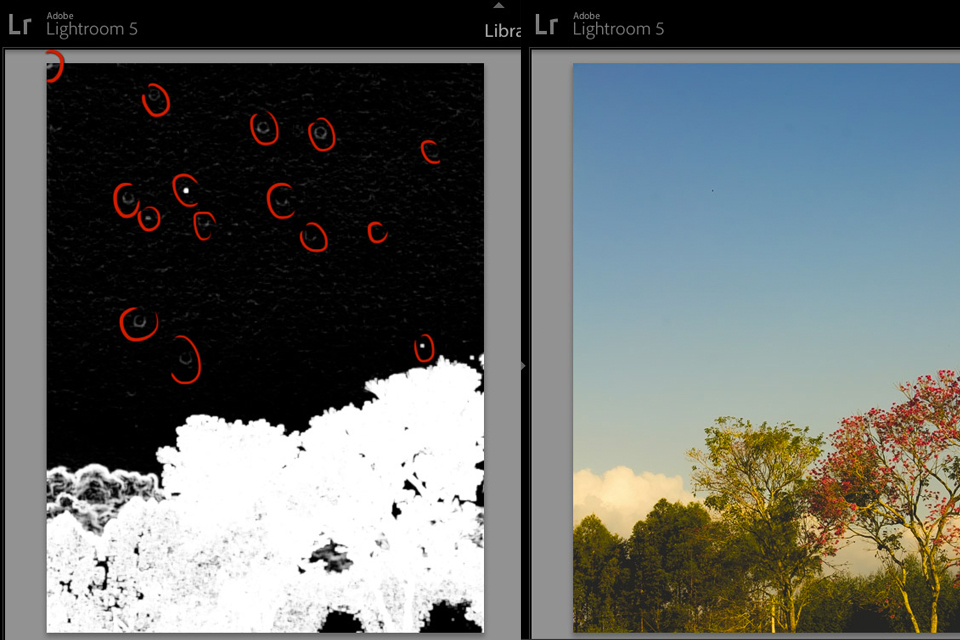 lightroom-visualize-spots