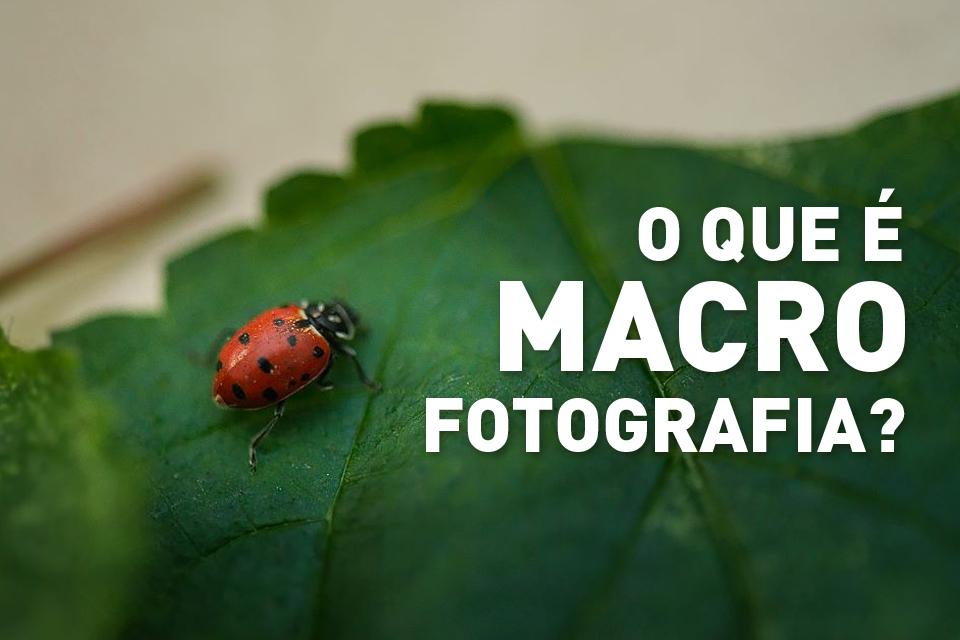 fotografia-macro