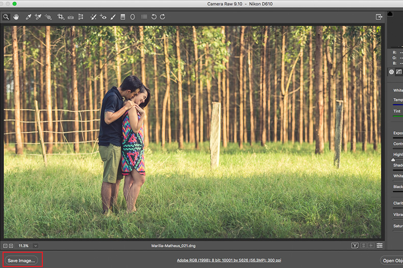 cortar-fotos-camera-raw-01